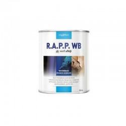 Prochemko RAPP WB